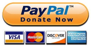 Make a Secure Online Donation Through PayPal